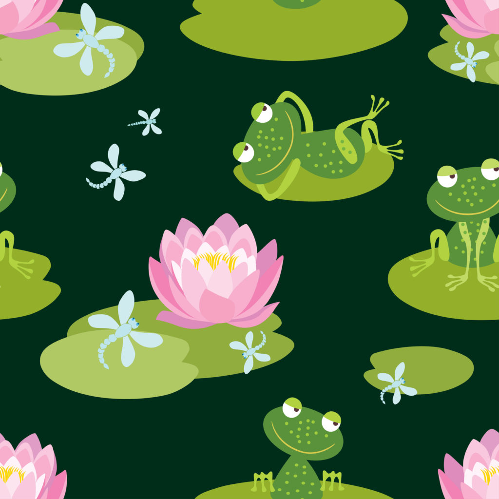 ceoplaybook, belizaire, lily pad theory, meyer
